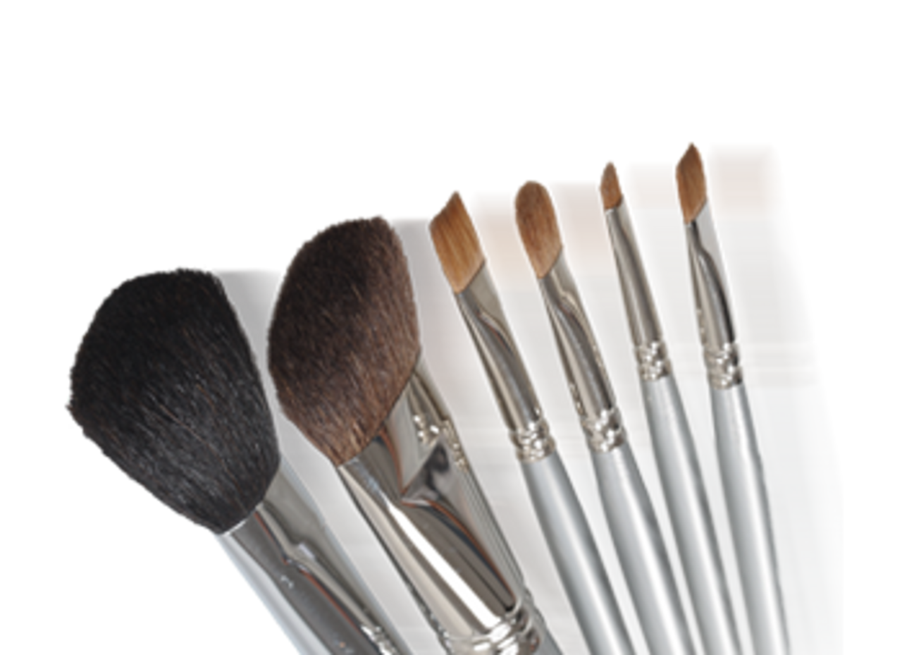 Makeup Brushes and Cleaners